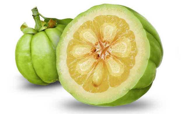 Garcinia Cambogia Extract Reviews and Research